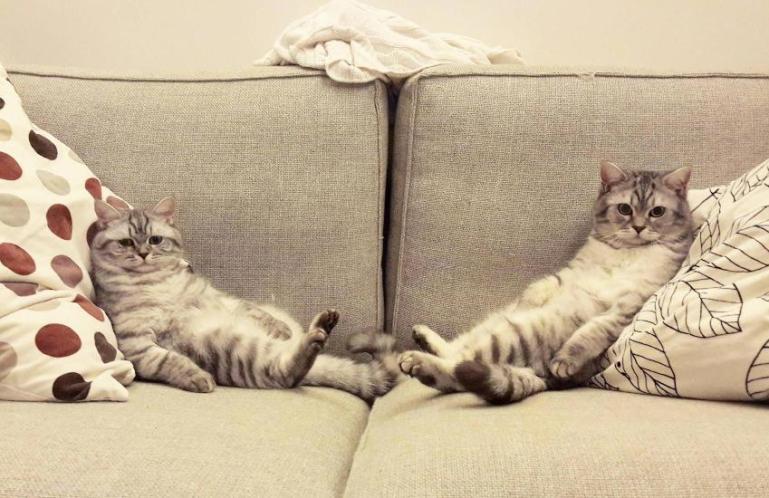 Что происходит с вашим телом, когда вы сидите по 12 часов в день