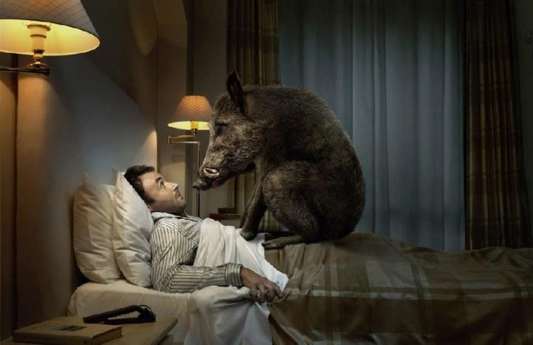 Почему сняться ночные кошмары?