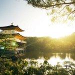Золотые правила Кацудзо Ниши