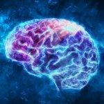 10 простых упражнений для развития возможностей мозга
