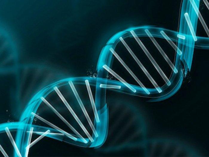 8 фактов о генетике, которые заставят вас открыть от удивления рот