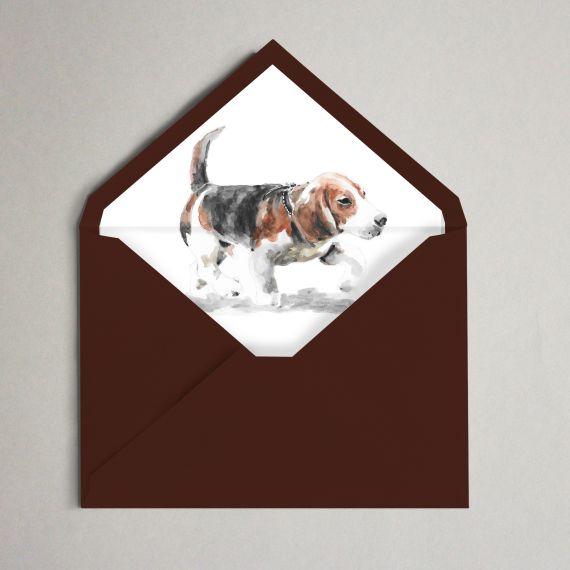 sobre forrado beagle invitación boda