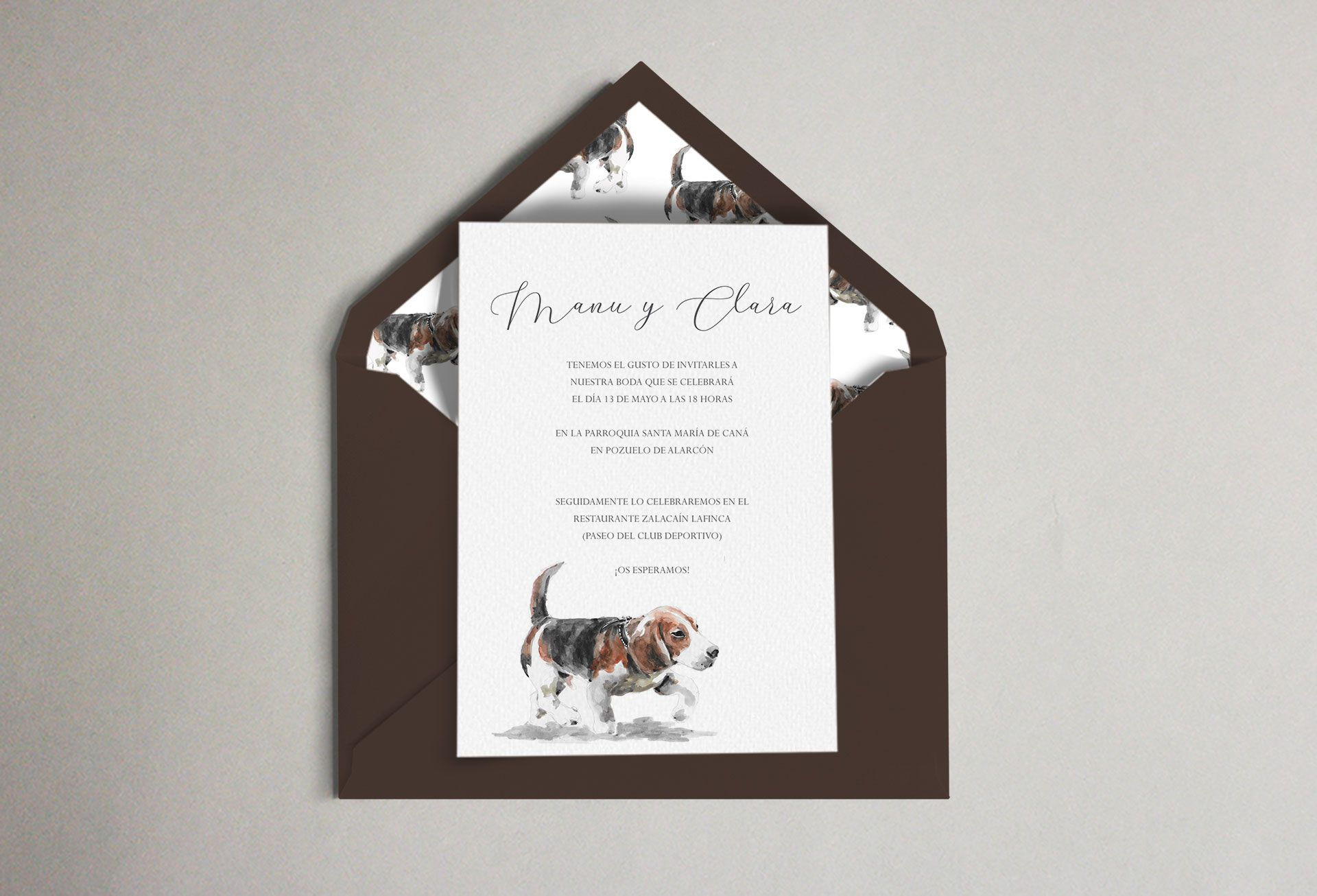 invitación sobre forrado beagle perro boda