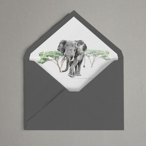 sobre elefante africa