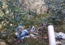 [dotb.eus] Unos 150 jóvenes 'eskauts' de Euskadi limpiarán mañana el río entre Durango y Mañaria