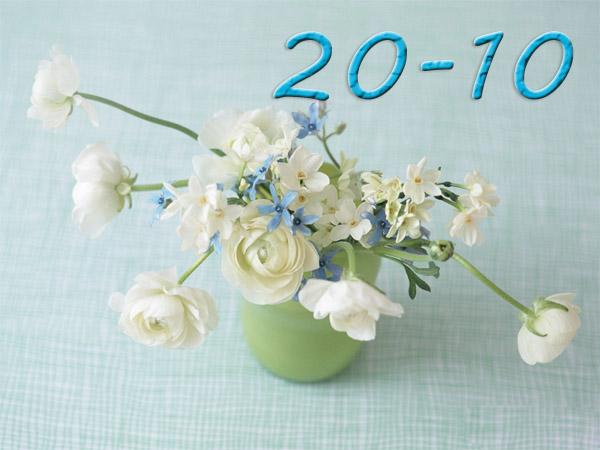 hoa cho ngay 20-10