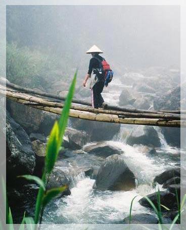 PhuNu_VietNam