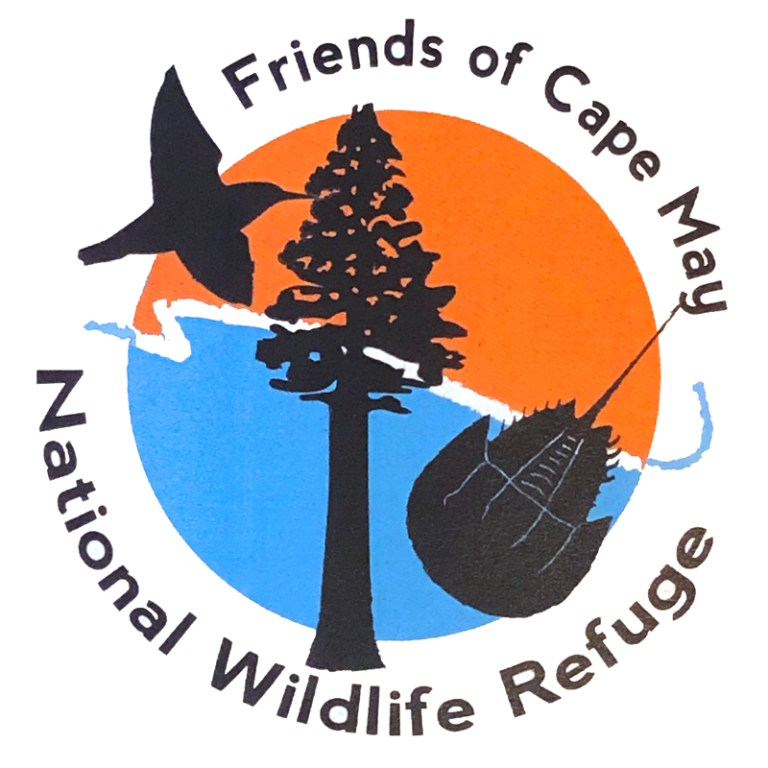 Friends of Cape May National Wildlife Refuge