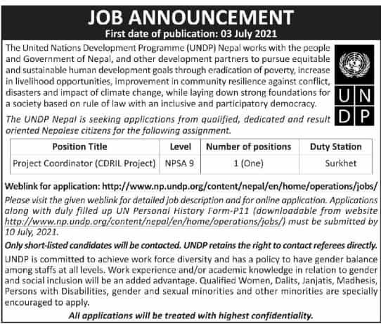Project Coordinator Job in UNDP