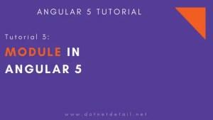 module in angular 5