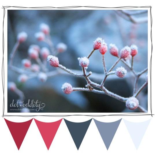 Winter berries colour palette