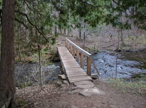 wild3-bridge