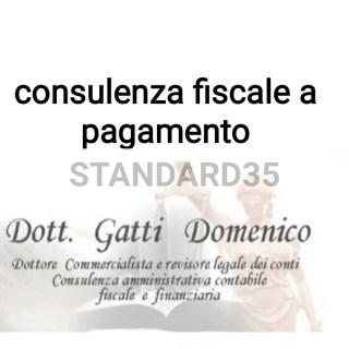 consulenza fiscale a pagamento
