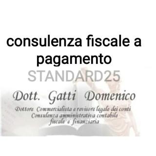 consulenza fiscale a pagamento standard25