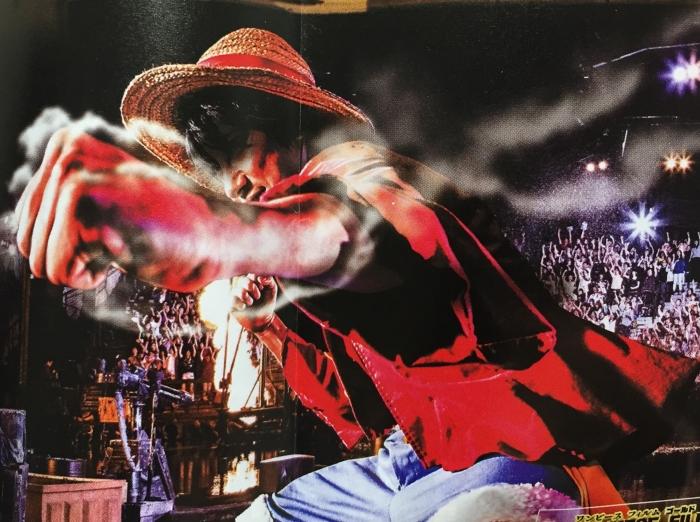 USJ『ワンピースプレミアショー2016』一番安い席からの見え方&感想
