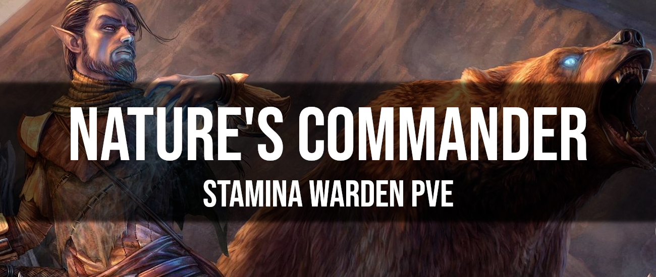Nature's Commander – Stamina Warden PvE Build - Dottz Gaming