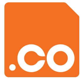 .co domain registry