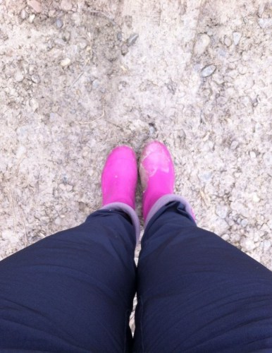 cizme roz