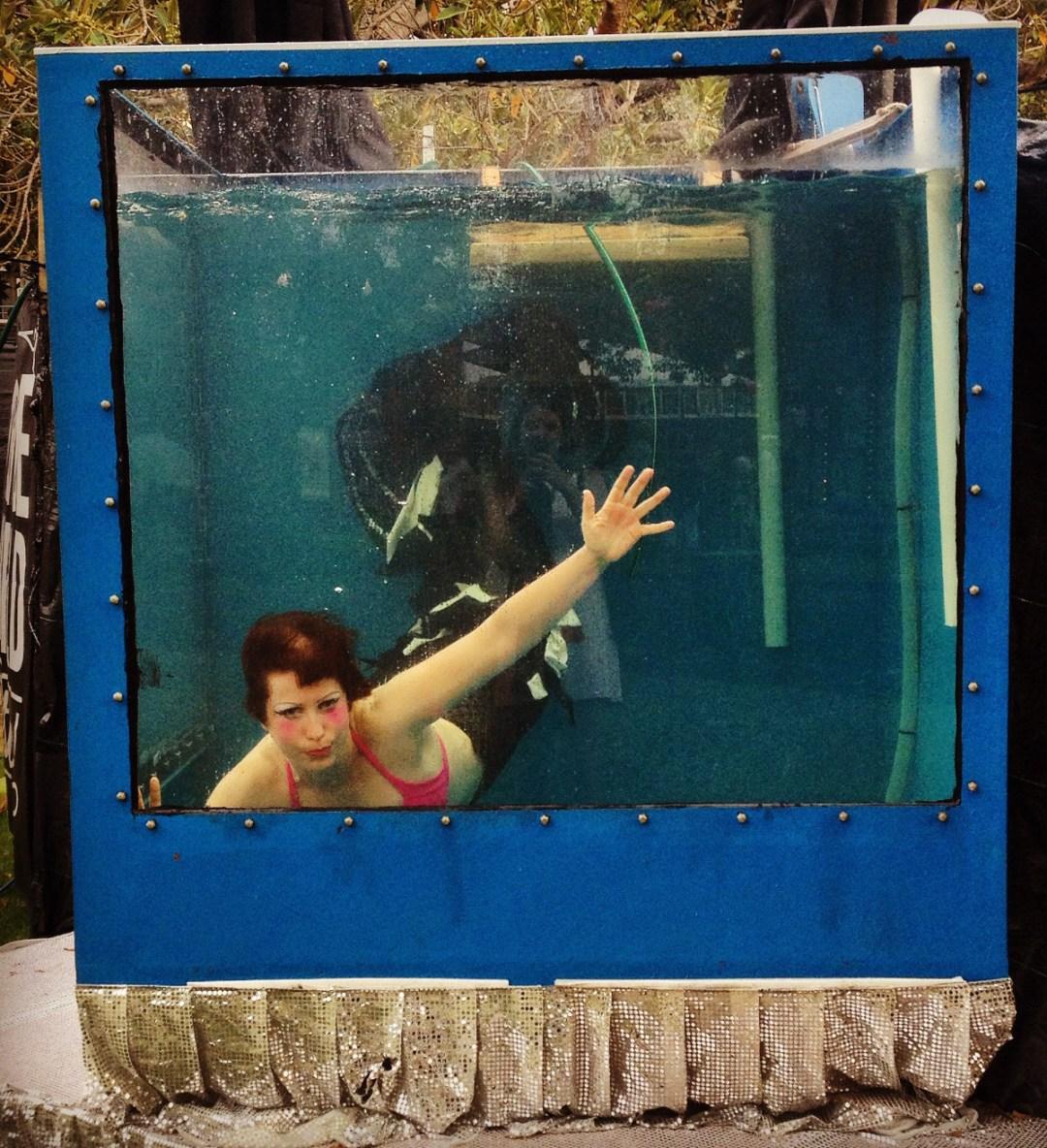 Mermaid in fish tank Double-Barrelled Travel