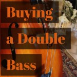 Buying a Double Bass Part I – Three Basic Categories