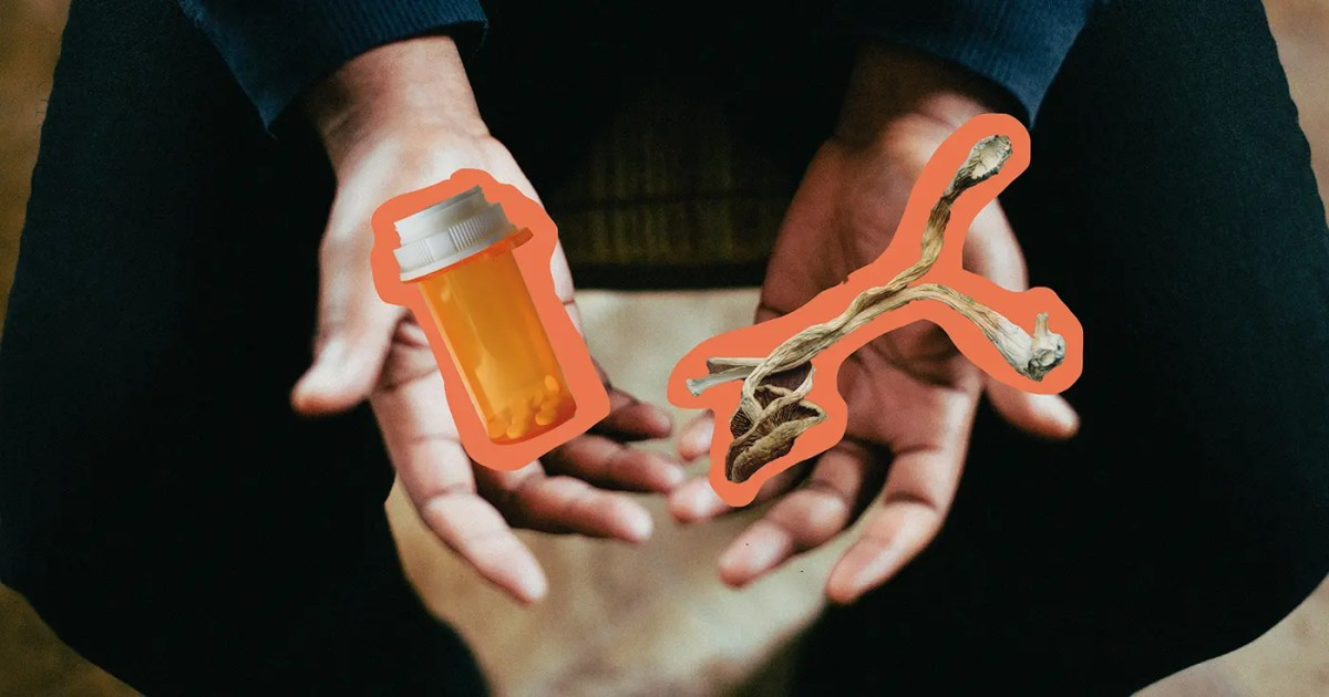 Doubleblind: Two hands holding psychedelic mushrooms and antidepressant pills. In this article, Doubleblind explores why taking psychedelics while on antidepressants could make treatment ineffective