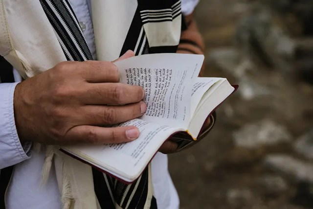 DoubleBlind: Hands holding the Hebrew Bible. In this article, DoubleBlind explores how Rabbi Zac Kamenetz is using psilocybin and psychedelics to reignite Judaism.