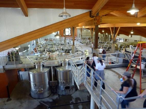 Where the magic happens - Inside Halter Ranch