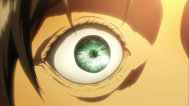 Some birds reflected in Eren's eye from the first episode of the Attack on Titan anime