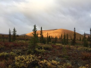Alpenglow on Caribou Hunt