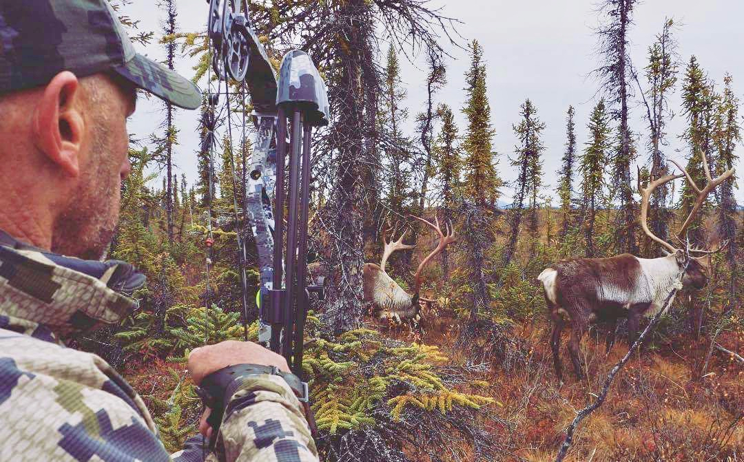 Arctic Caribou Hunting