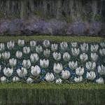 Long-Garden---Spring-1