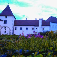 A Summer Evening in Varazdin, Croatia—Dinner, Wine and A Movie