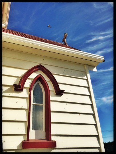 Church_windowbird