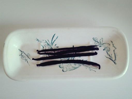 gousses de vanille 香草莢