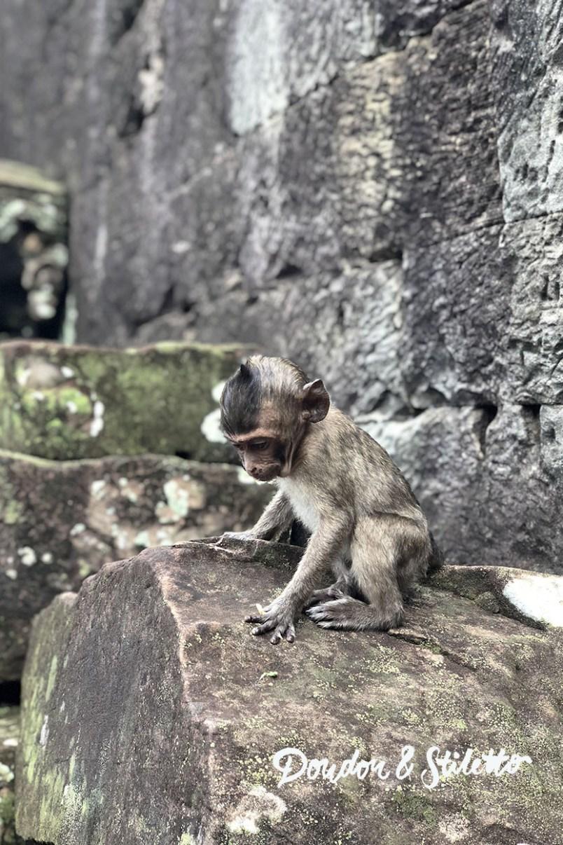 Bayon Angkor 1
