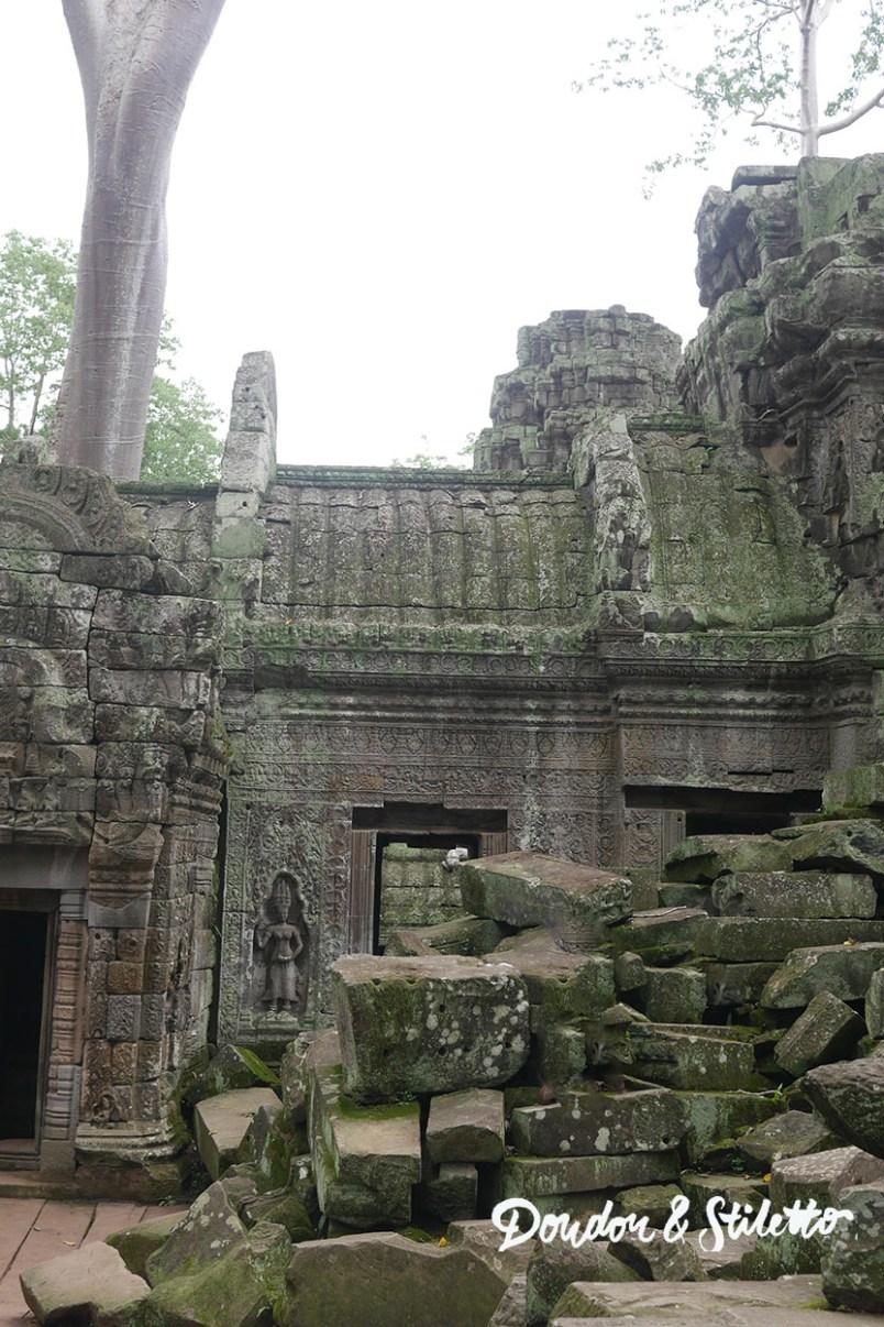 Ta Phrom Angkor 5