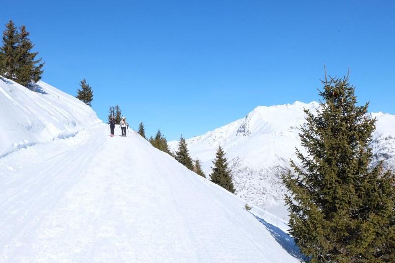 Les 2 Alpes5