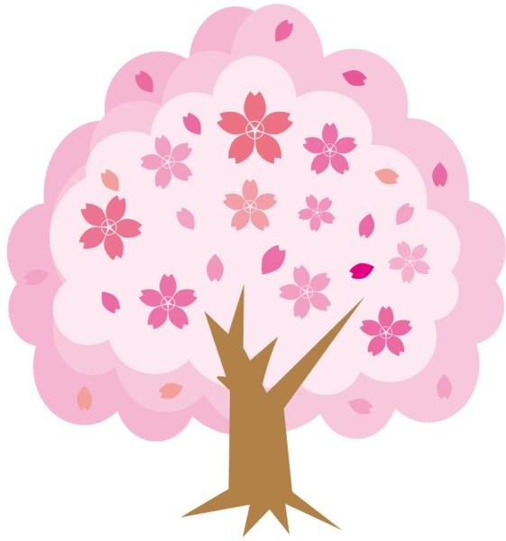 YouTubeで再生数が伸びない理由。桜の動画で誰に何を伝えたい?