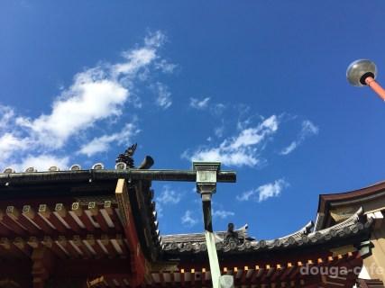 むしろ凶が強運に!浅草寺のおみくじマーケティングがにくい理由と浅草神社との比較