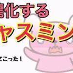 ジャニーズWEST【濵ちゃんへの悪巧みがスゴイ淳太と照史!笑】(中間、桐山)