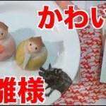 めっちゃかわいいお雛様の和菓子を頂いたよ!【木下ゆうか】