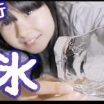 【大流行】薄い氷かじってみた!音もスゴイw【ほのぼの番組】