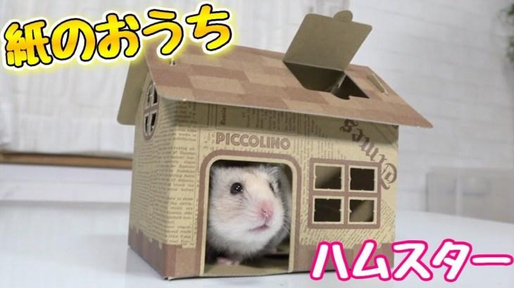 紙で簡単に作れるハムスターのお家が可愛い!!