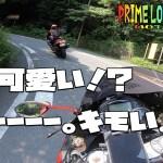 静岡のキモ可愛い場所!行ってみて欲しい!/motovlog#120