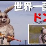 【PUBG】可愛いウサギによる世界一酷いドン勝がこちら