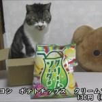 びっくり味!?クリームソーダ味のポテチがあるよ☆ヤマヨシのポテトチップス☆猫と一緒に商品紹介・お菓子レビュー
