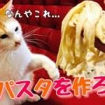 猫達とキムチパスタを作ろうとしたらまさかのハプニングが!?
