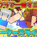 """【Minecraft】マイクラで一番すごい""""絶叫ウォータースライダー""""で遊んでみた!?神建築すぎるテーマパークがヤバすぎた…!!【ゆっくり実況】【たくっち】"""