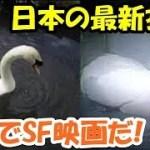 海外の反応 なんだこりゃ?!「日本の最新技術」驚きより恐怖を感じる・・「まるでSF映画の世界だ」