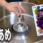 果汁グミで綿あめ作ってみた!! &ガム【感動】 PDS